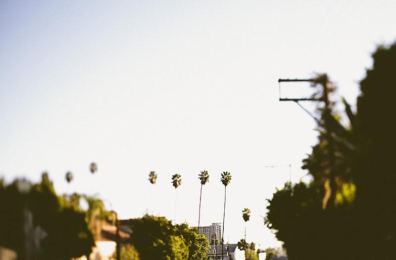 LA a la Liz_Beachwood Canyon_008.jpg