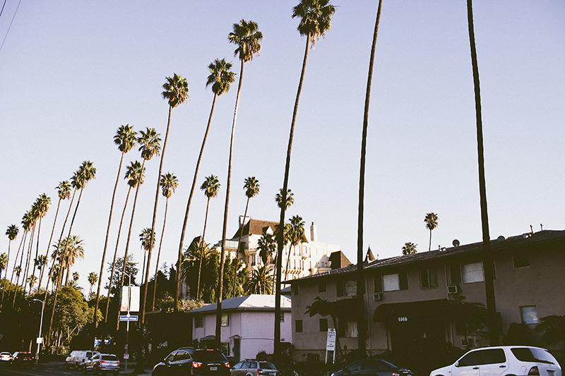LA a la Liz_Beachwood Canyon_016.jpg