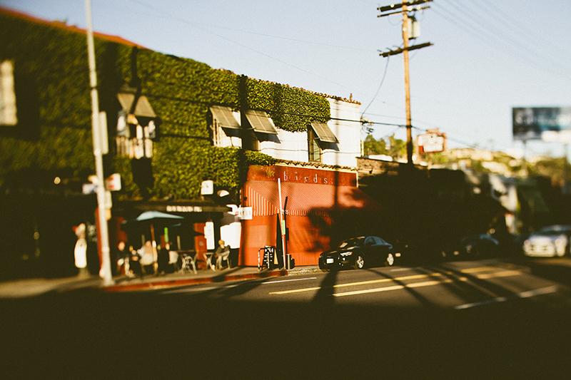 LA a la Liz_Beachwood Canyon_024.jpg