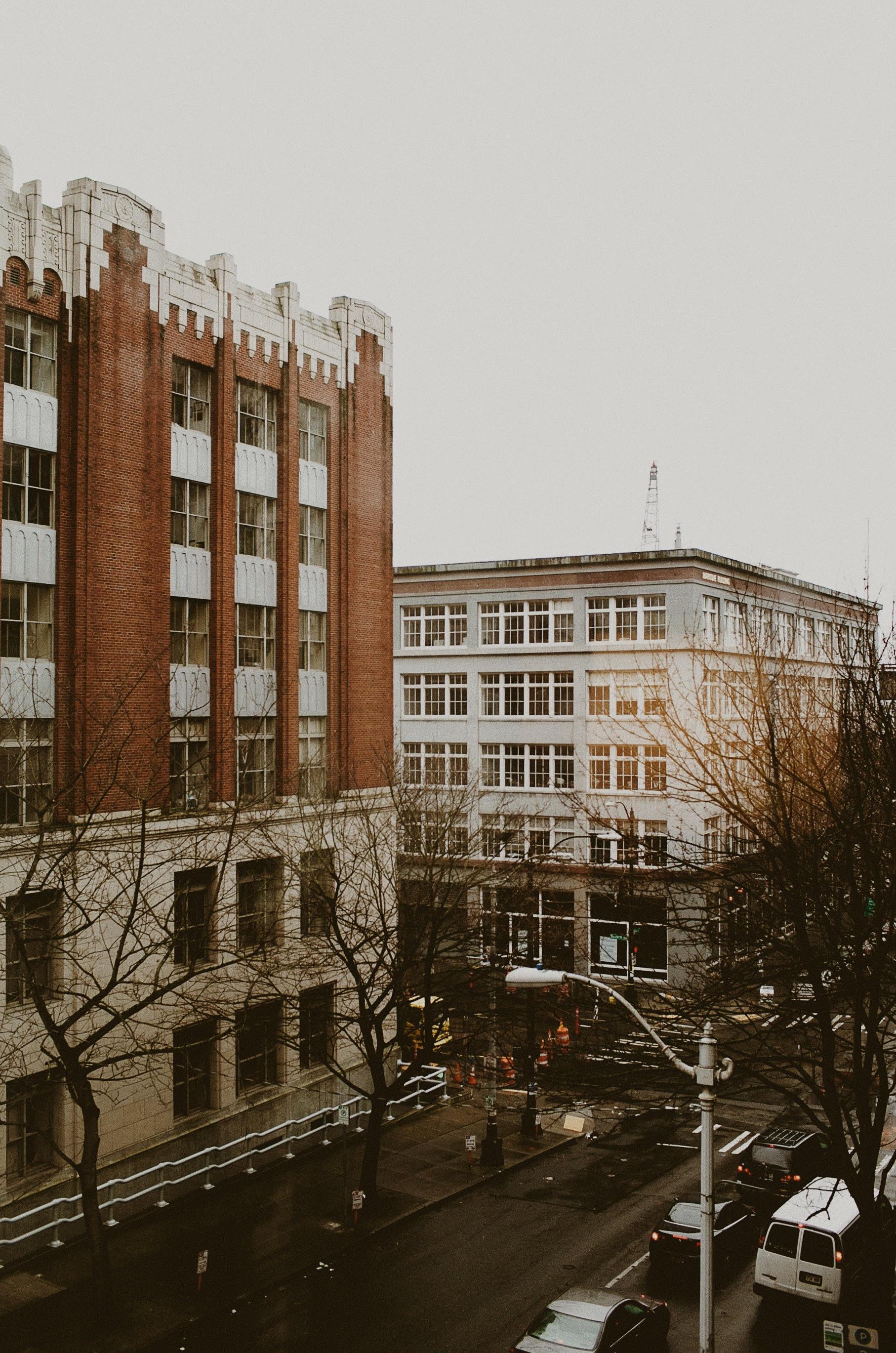 Seattle_Lifestyle_Photographer_009.jpg