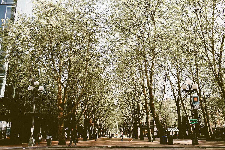 Pioneer_Square_017.jpg