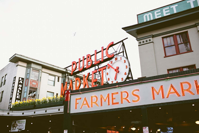 Seattle Lifestyle Photographer_006.jpg
