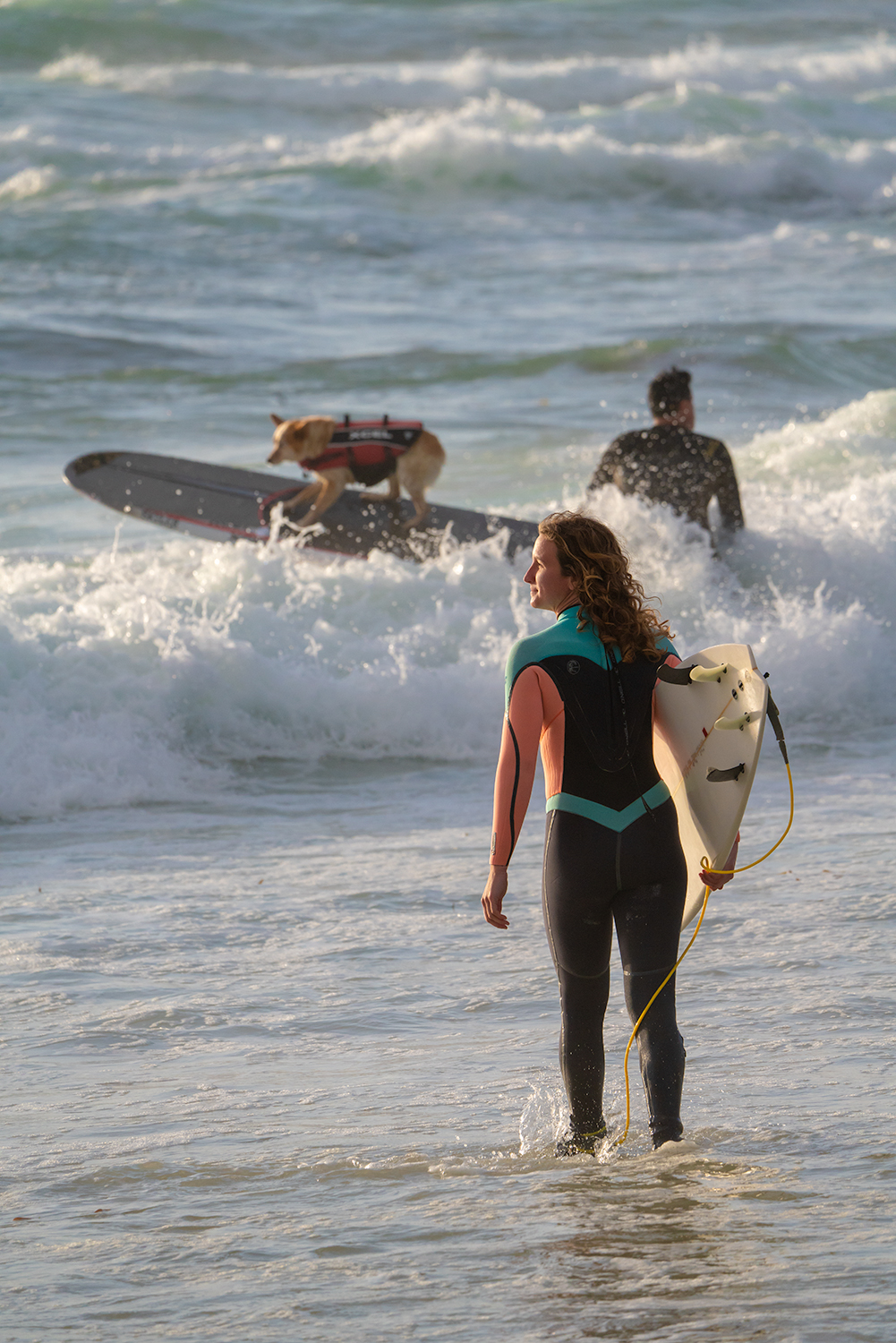 And yes, Kando provided a surfing dog for us to photograph. It's all part of the show, folks...