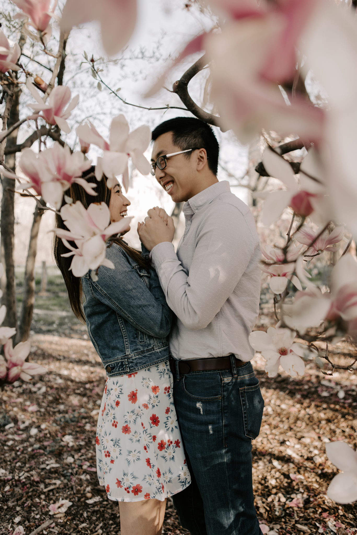 Cherry Blossoms in NYC