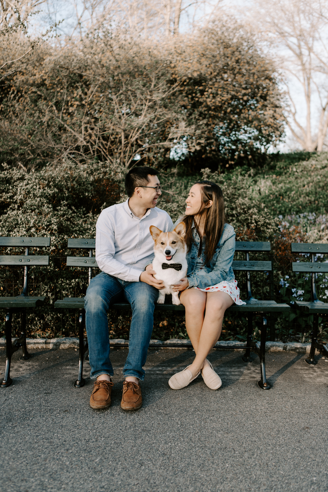 Engagement pictures with corgi