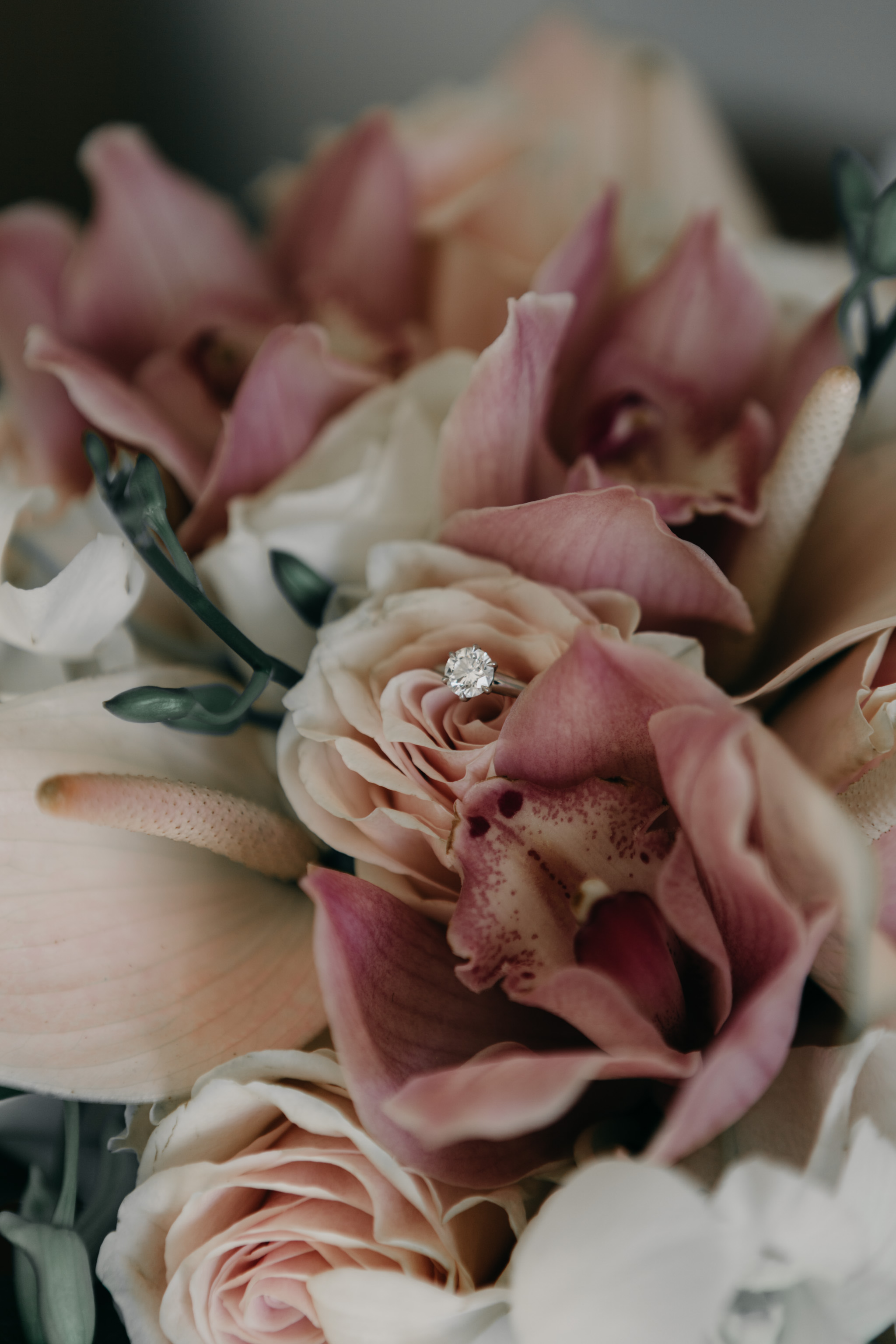 Turtle Bay Resort Elopement by Fine Art Wedding Photographer Desiree Leilani