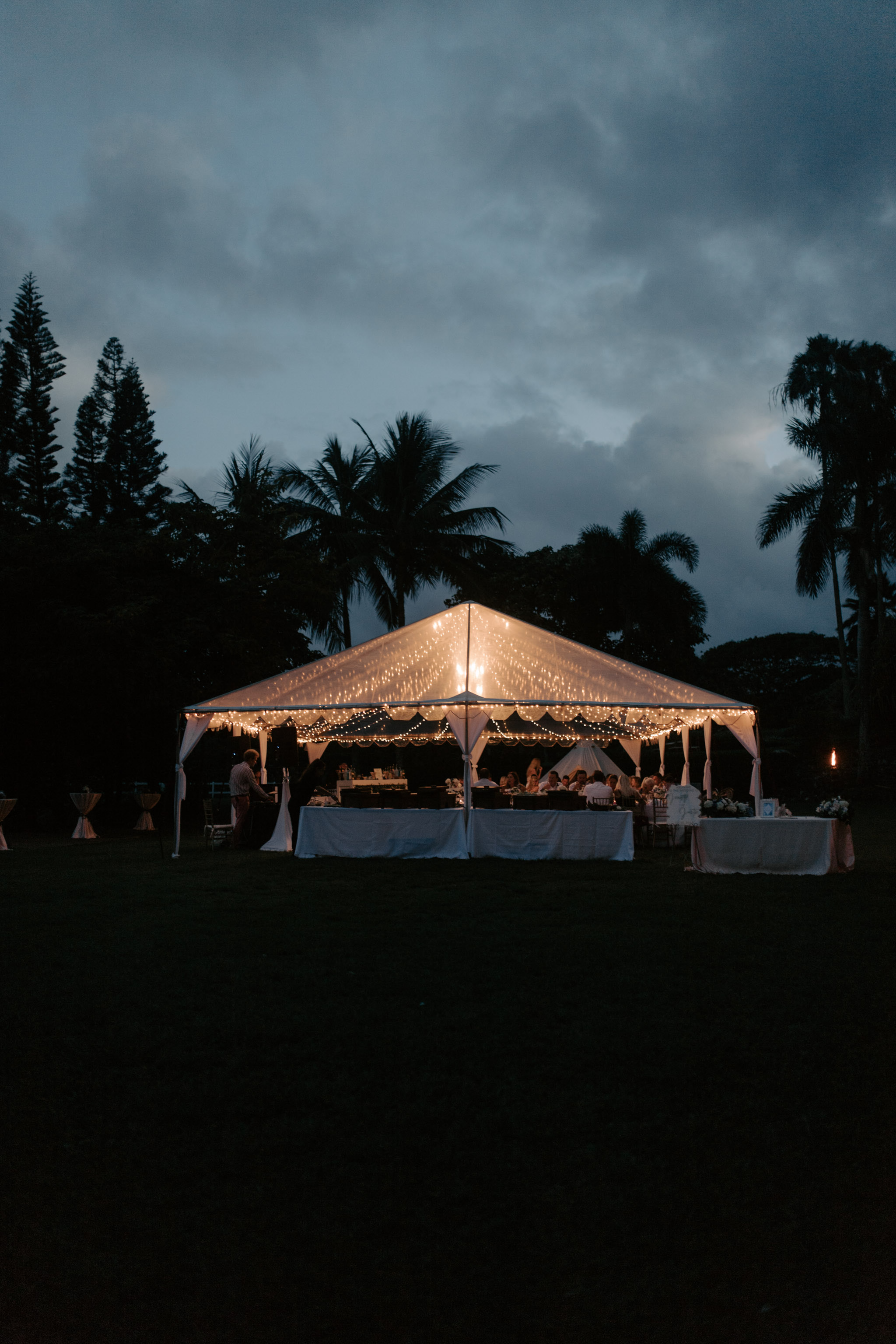 Gorgeous wedding photography at Kualoa Ranch Paliku Gardens. Photography by Hawaii fine art wedding photographer Desiree Leilani