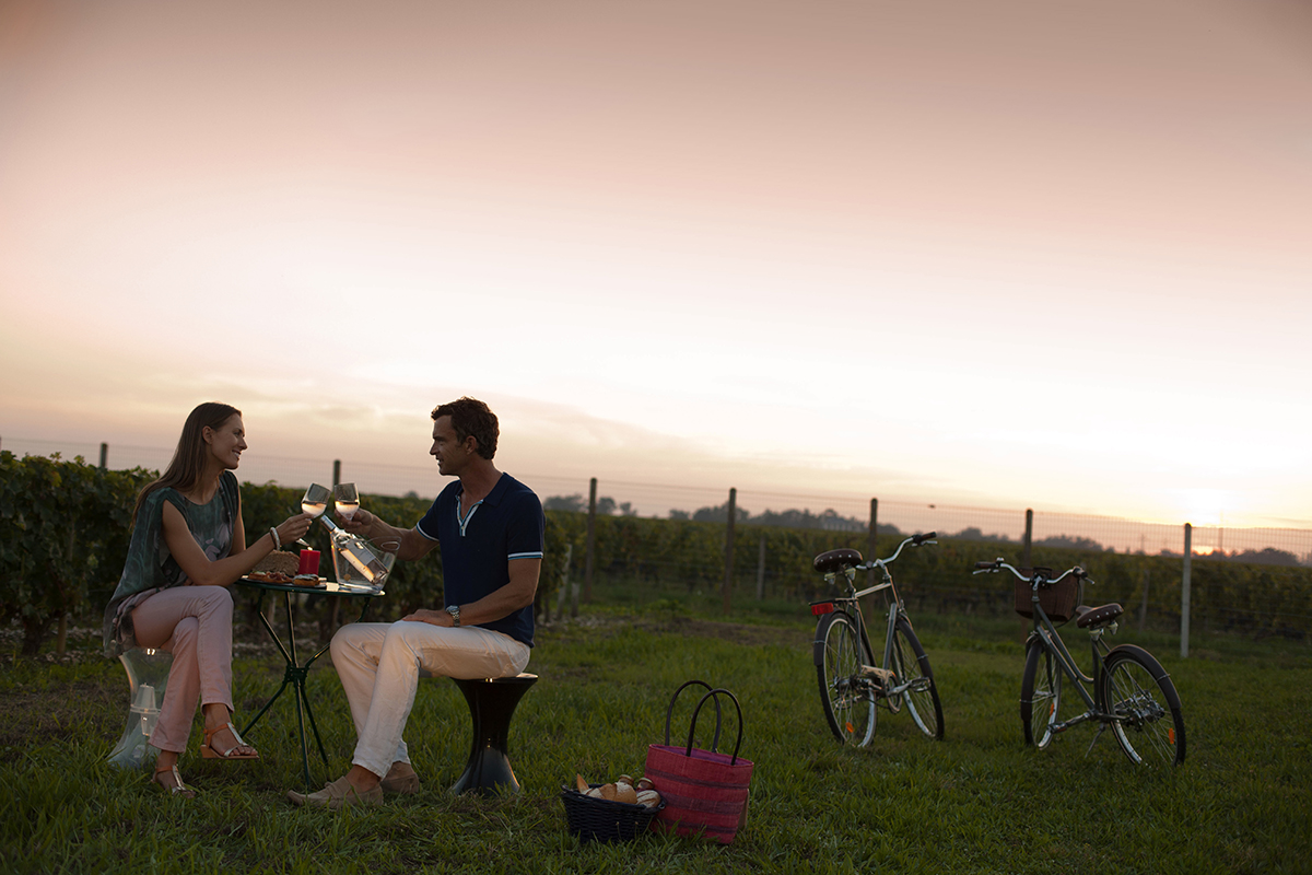Take away pic nic with bicycles.jpg
