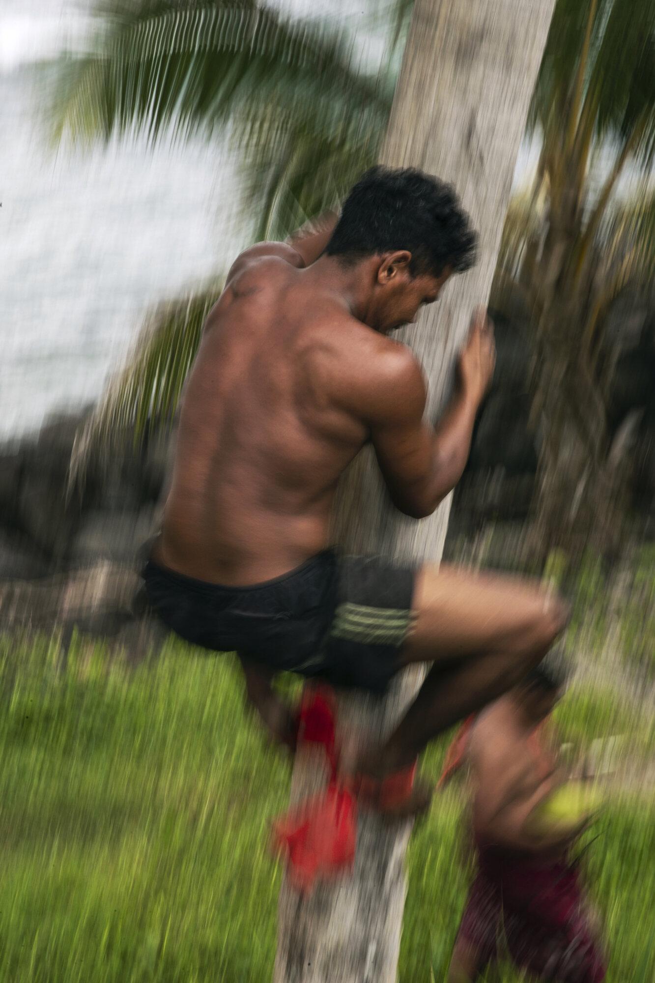 MulletBoards_Samoa__190202_0156.jpg