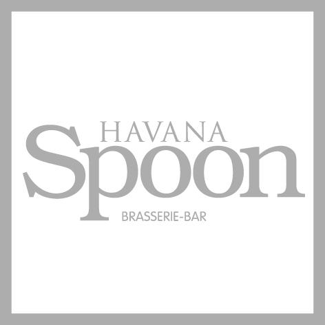 Havana_Spoon.jpg