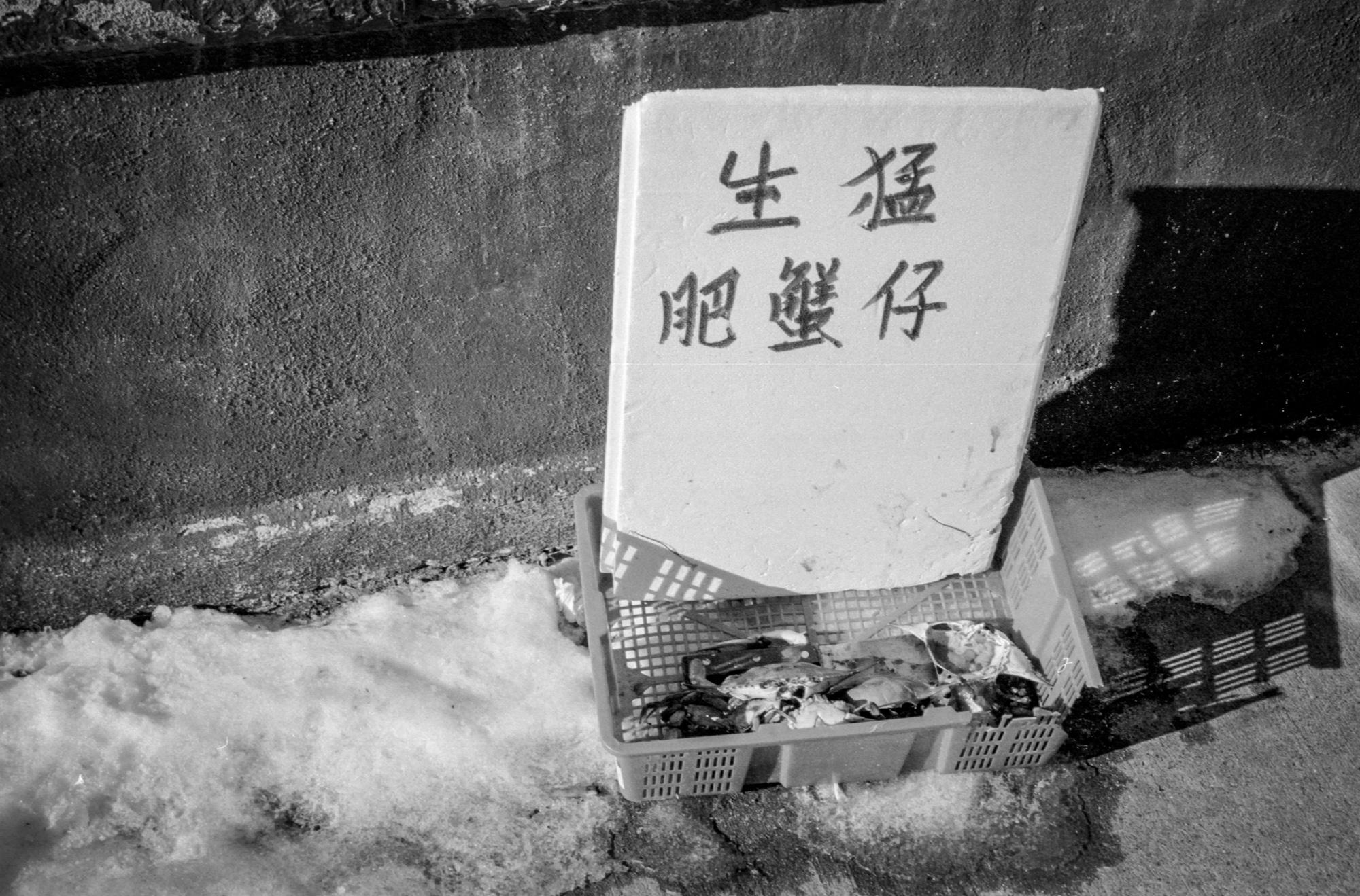 Chinatown (12 of 17).jpg