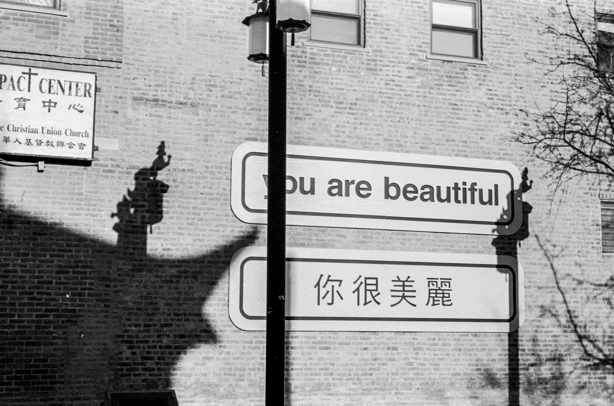 Chinatown (4 of 17).jpg