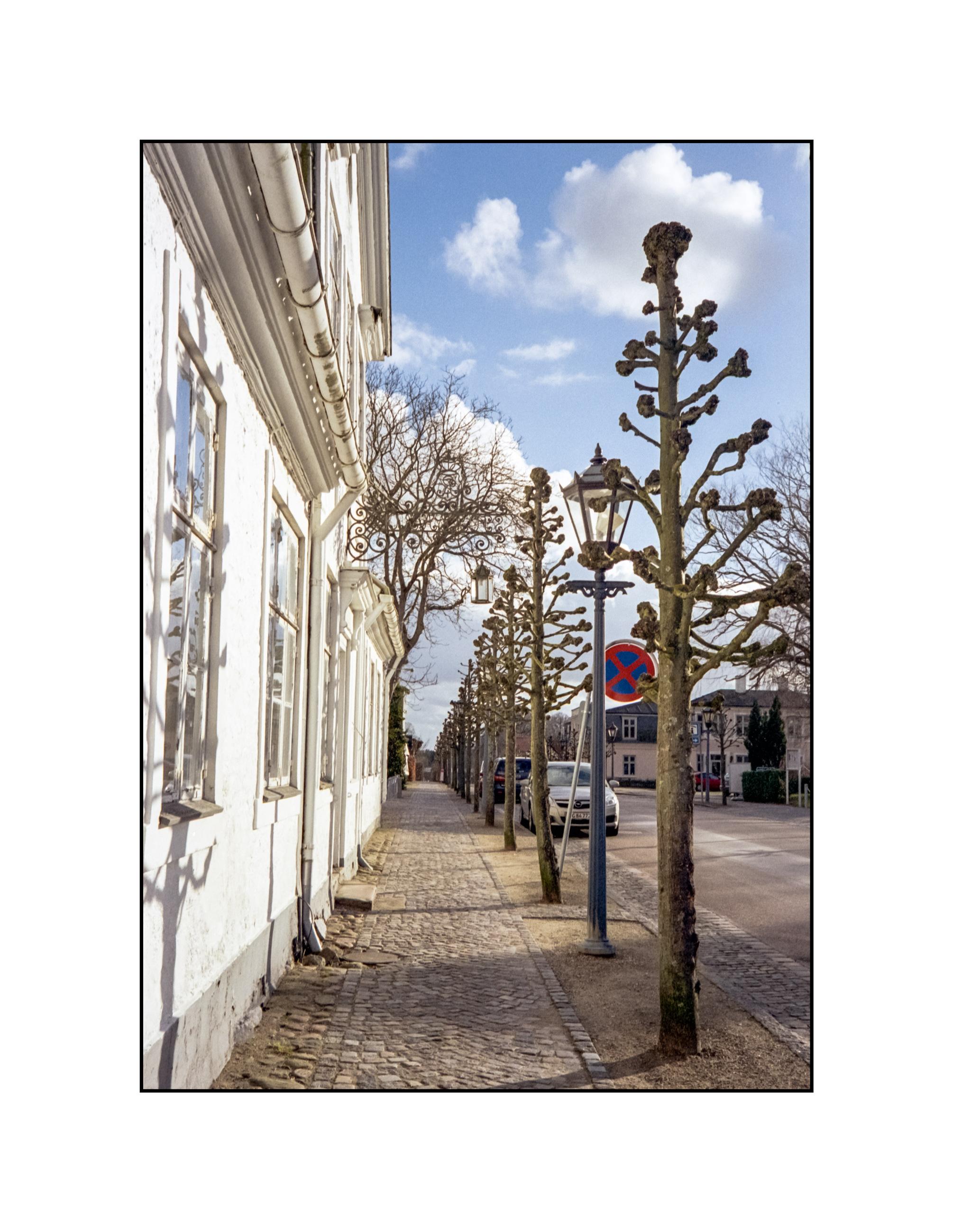 fredensborg-street.jpg