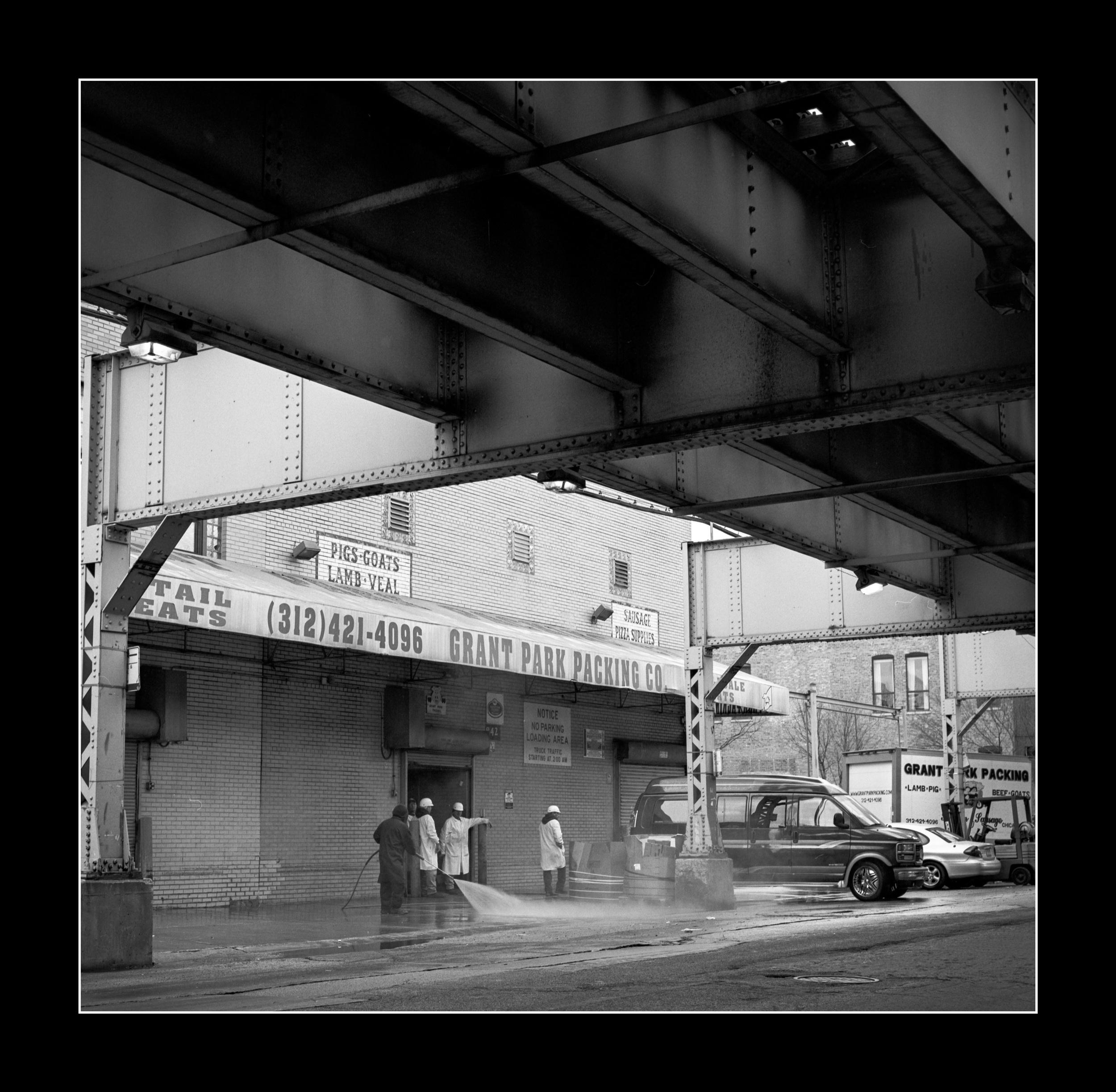 chicago40.jpg