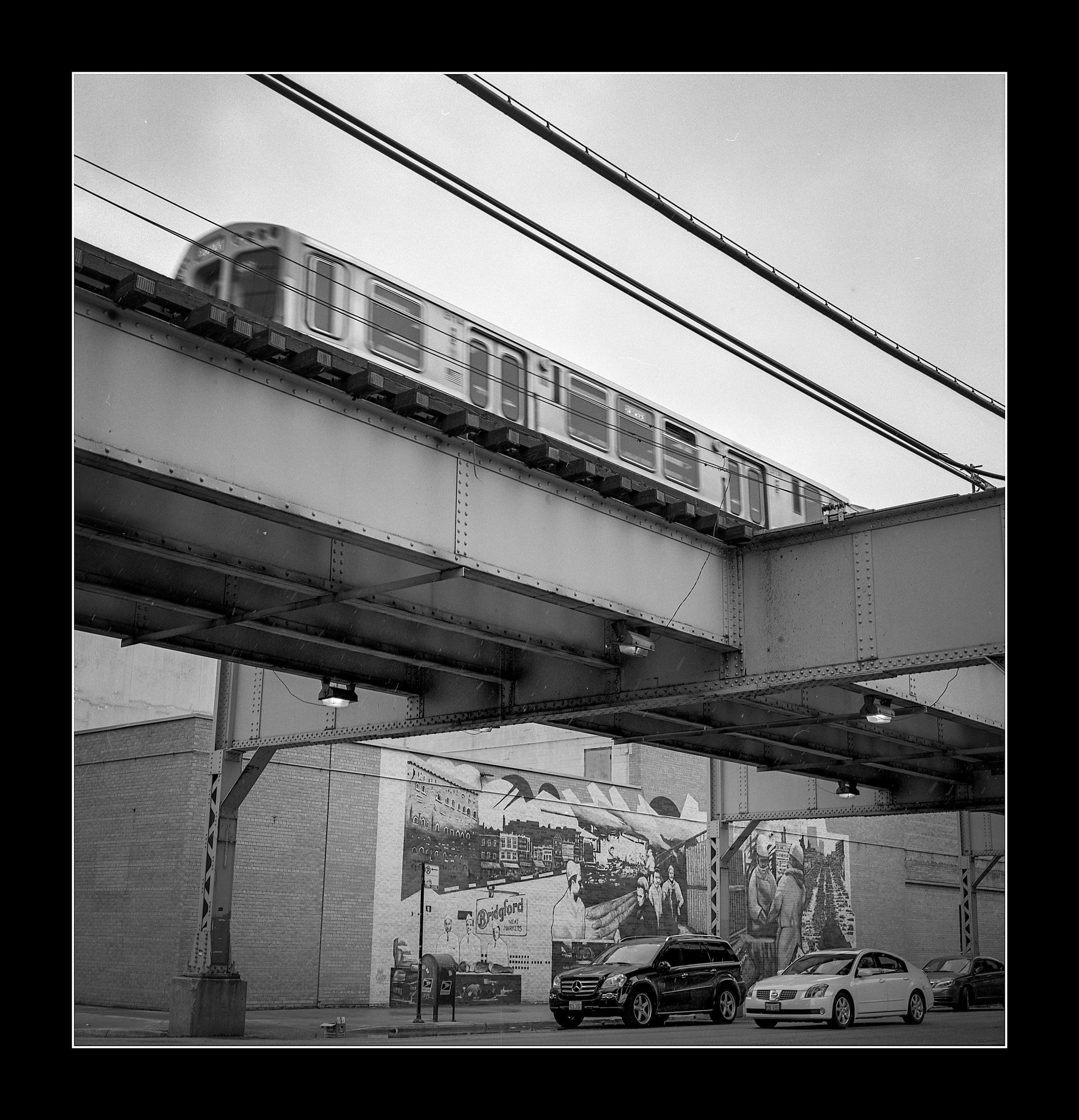 chicago42.jpg