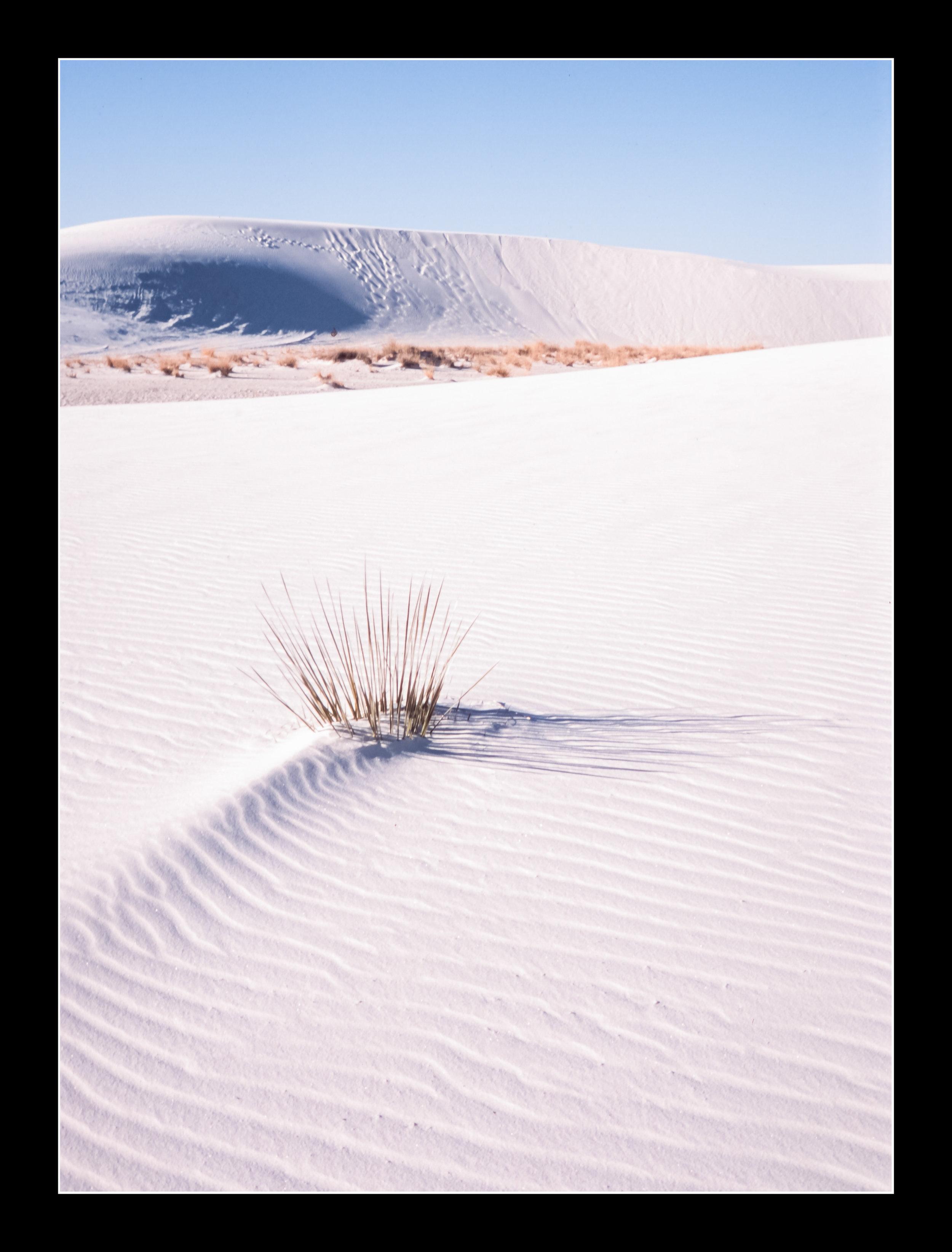 whitesandsprovia124.jpg