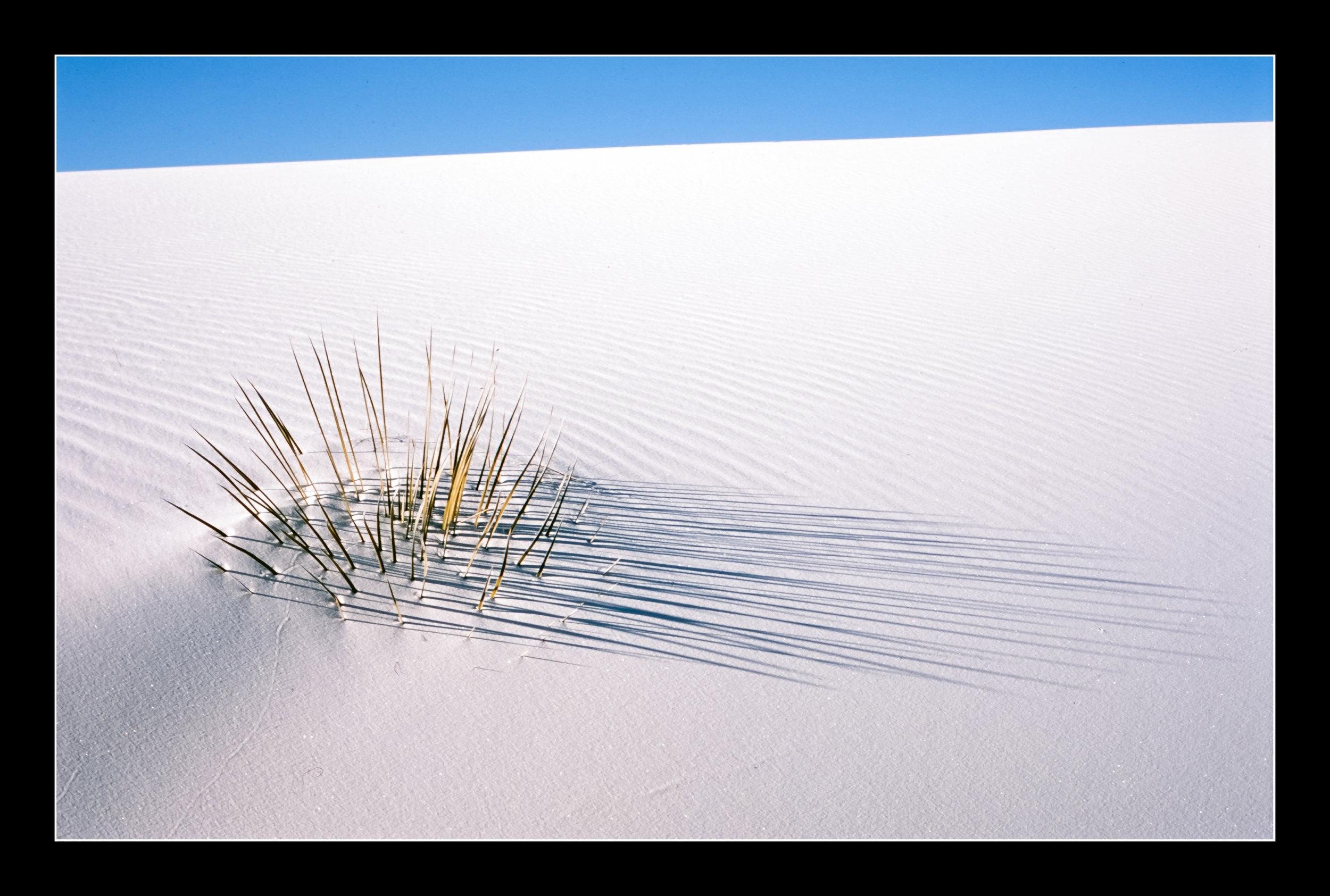 whitesandsprovia116.jpg