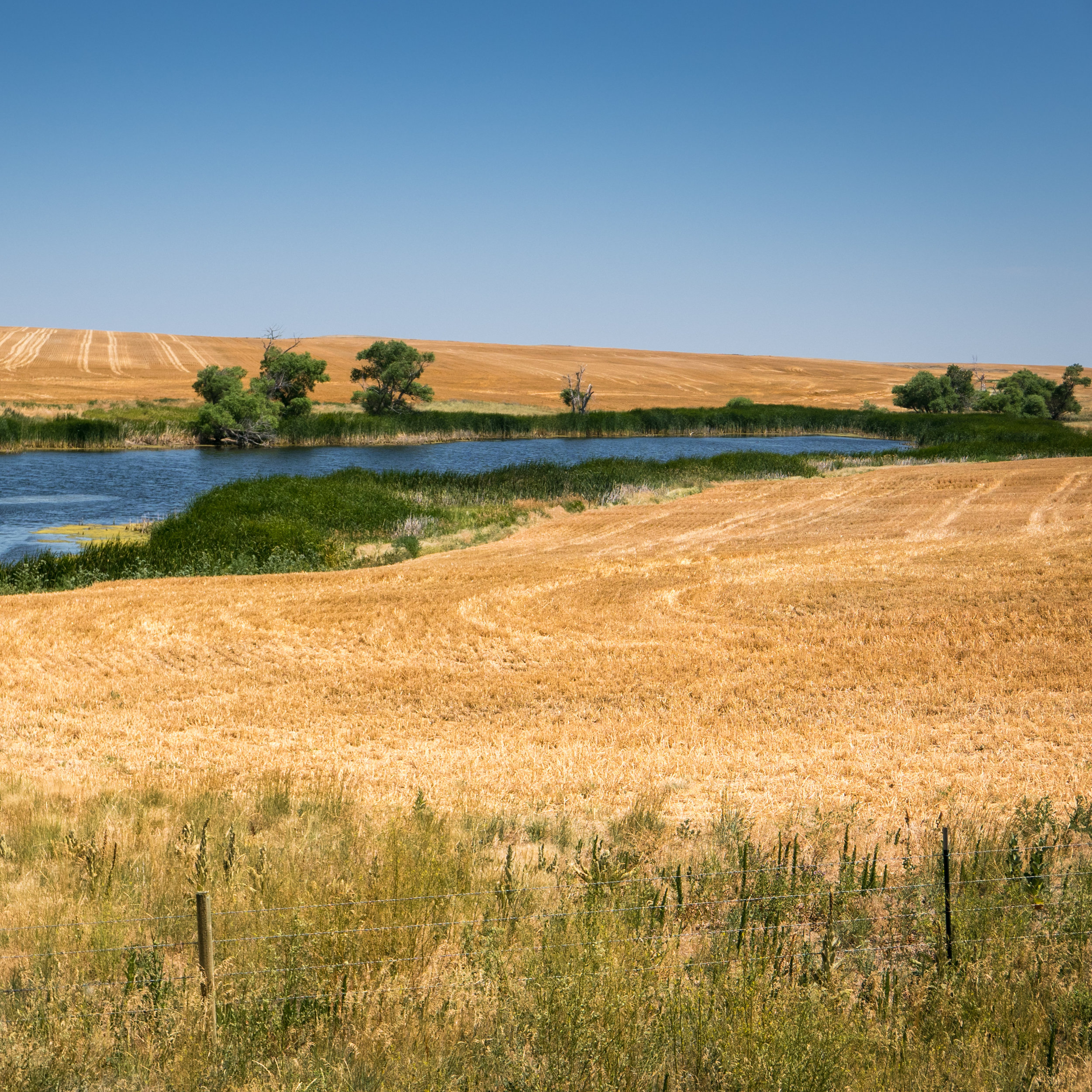 South Dakota (16 of 34).jpg