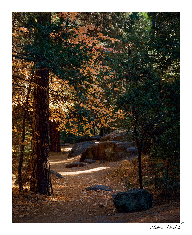 Yosemite cl-0002.jpg