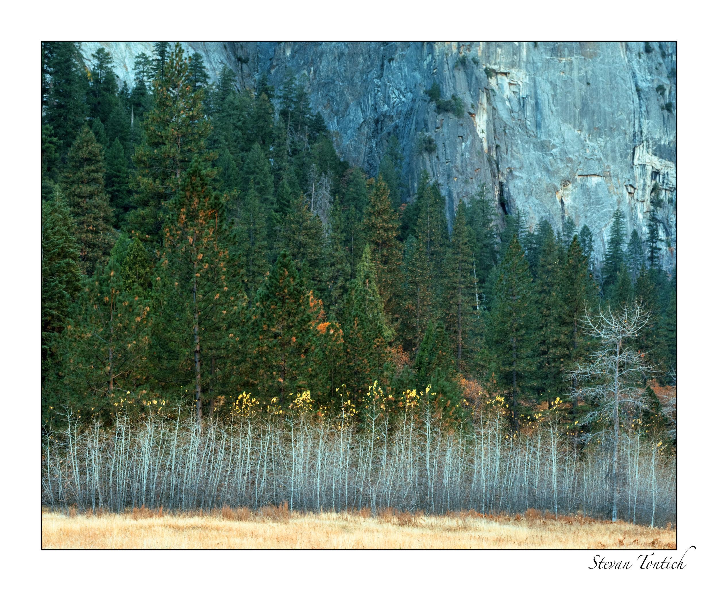 Yosemite cl-0005.jpg