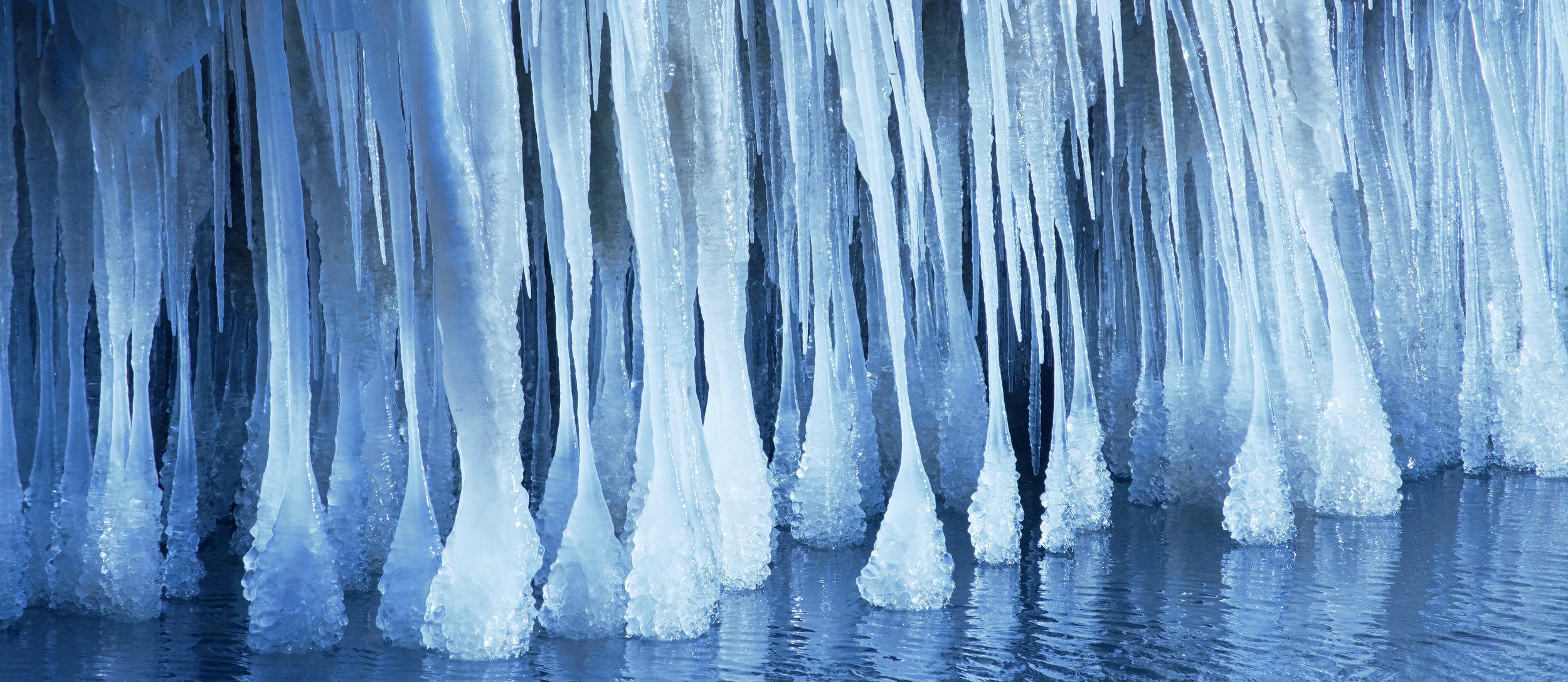 Icee forest.jpg