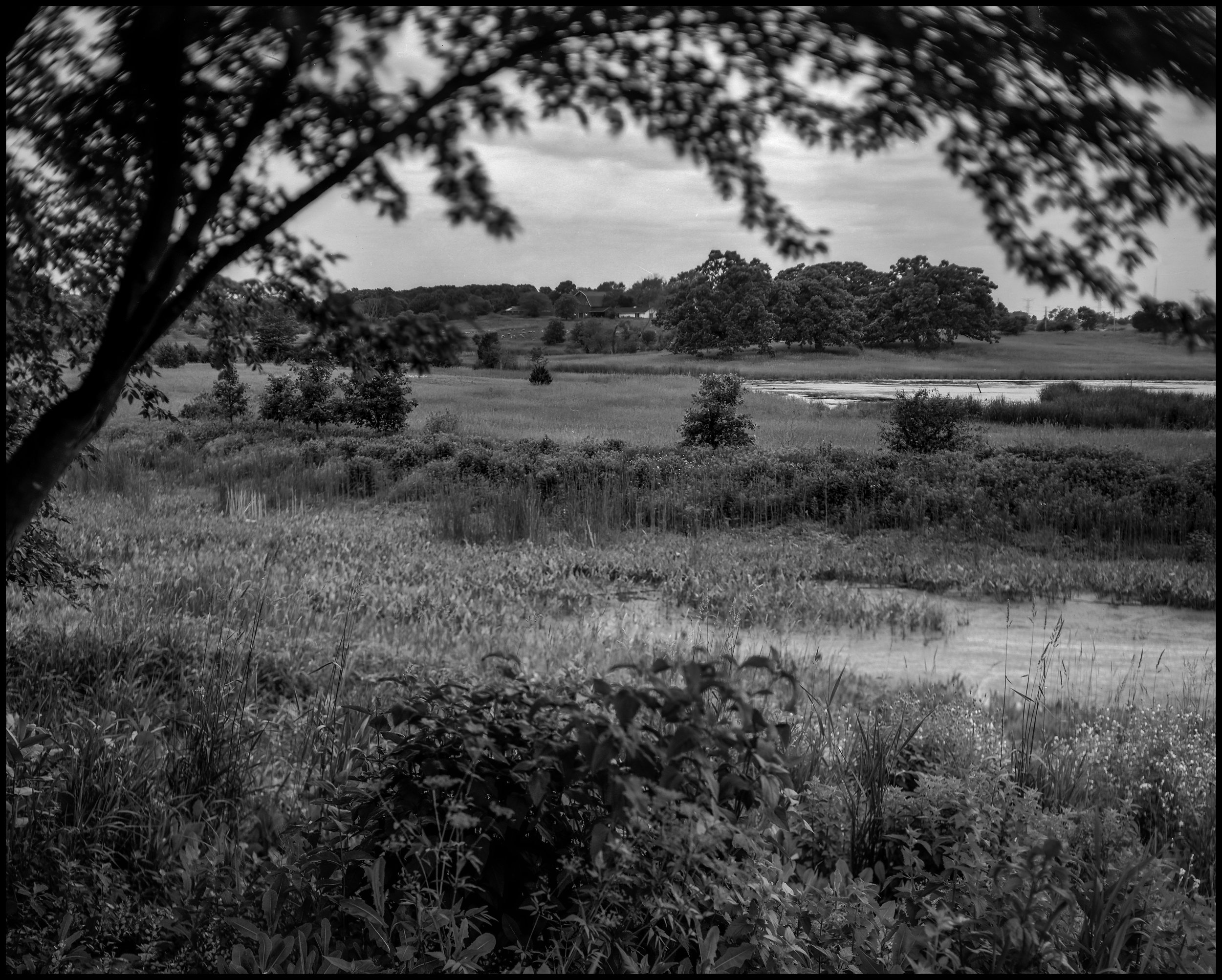 lake county landscape.jpg