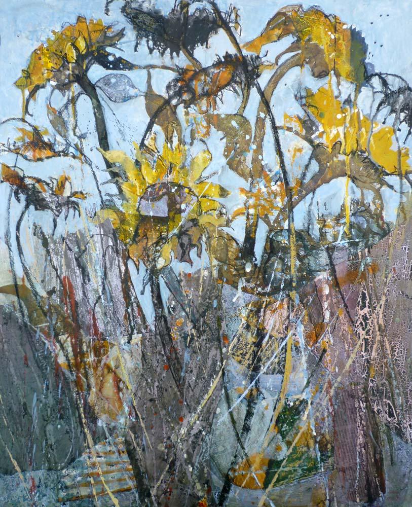 Last of the sunflowers