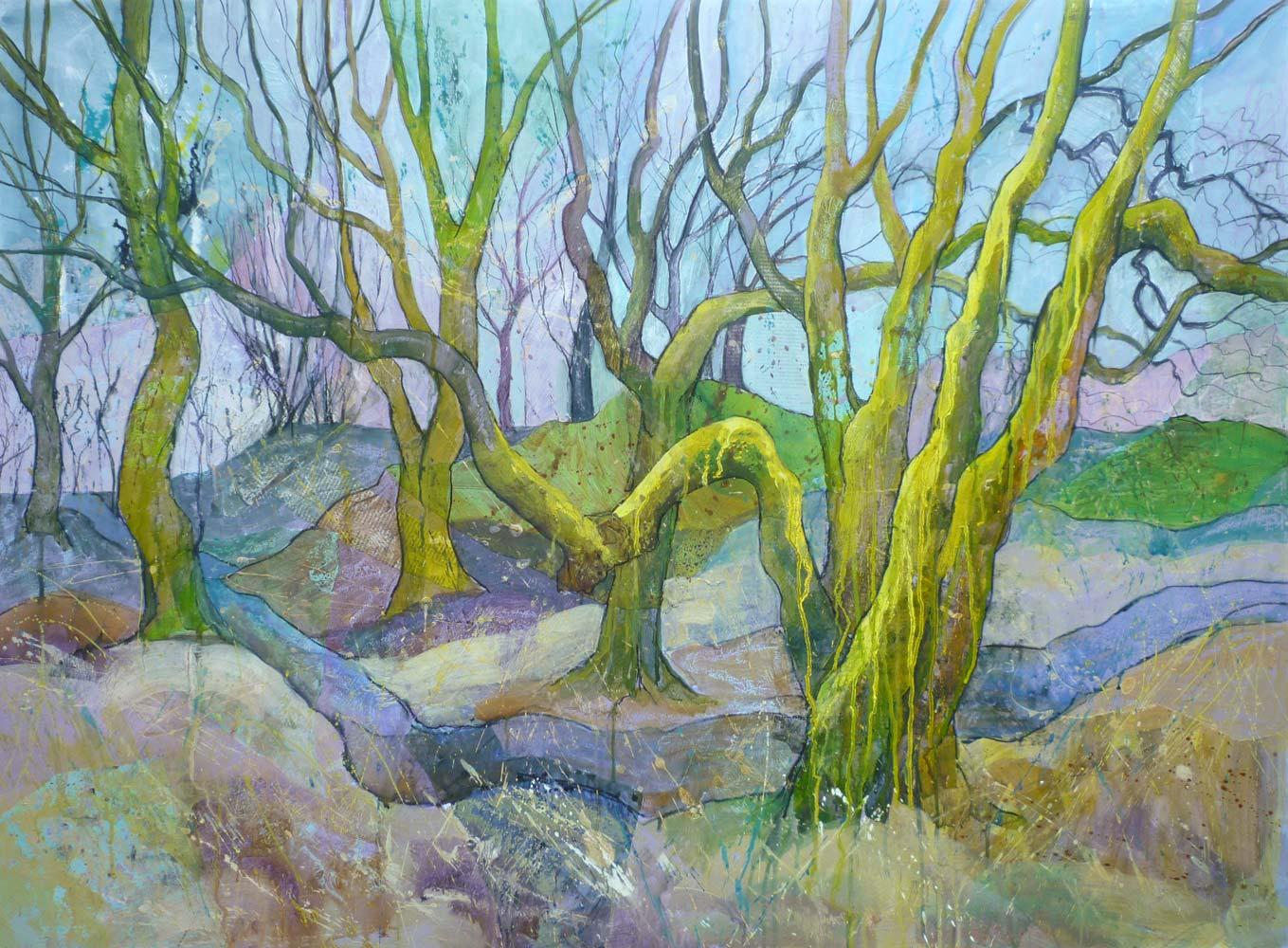 Mossy trees in Steeple Wood