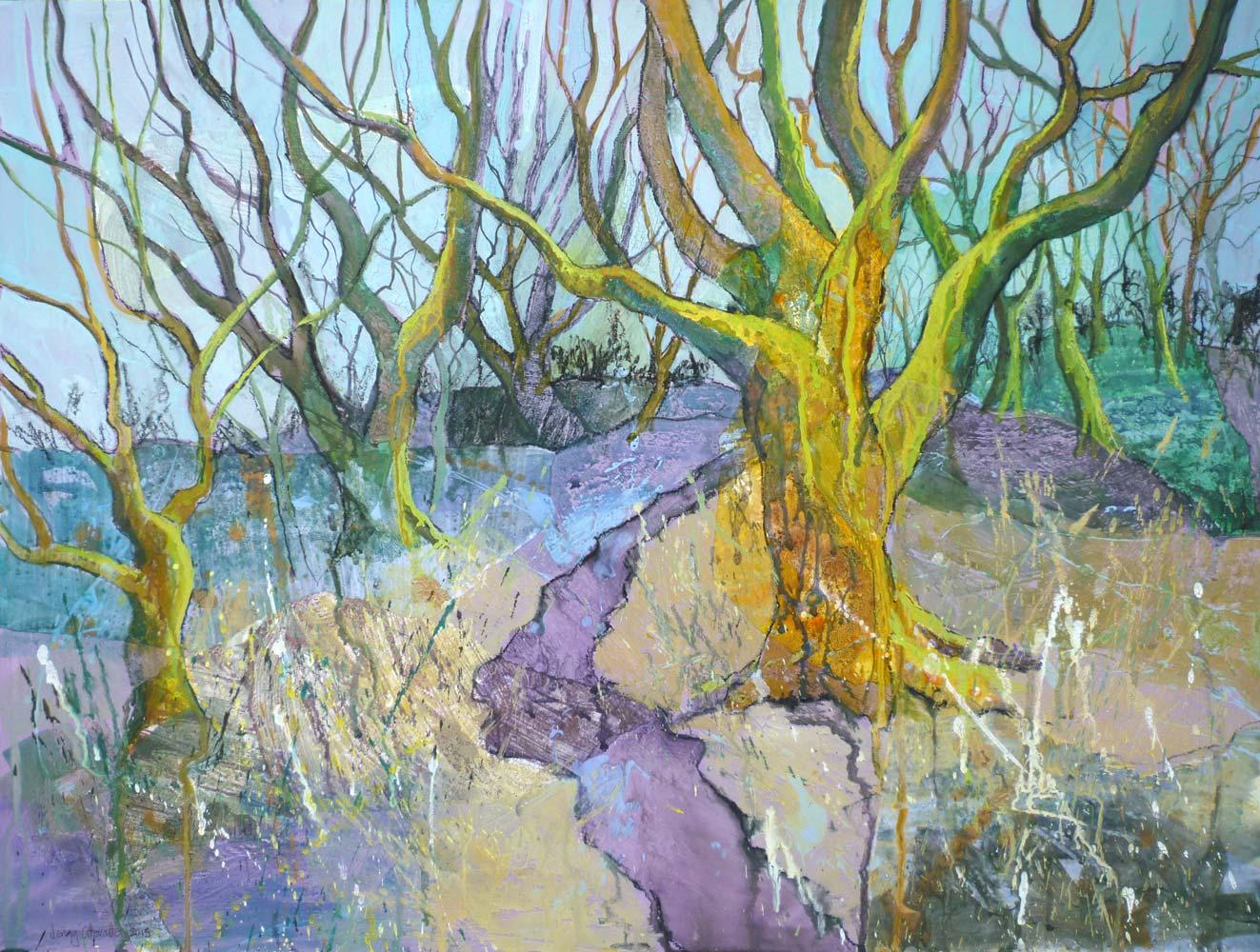 Spring in Steeple Wood