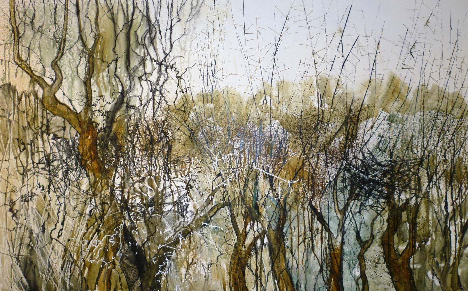 Winter hedgerow 4