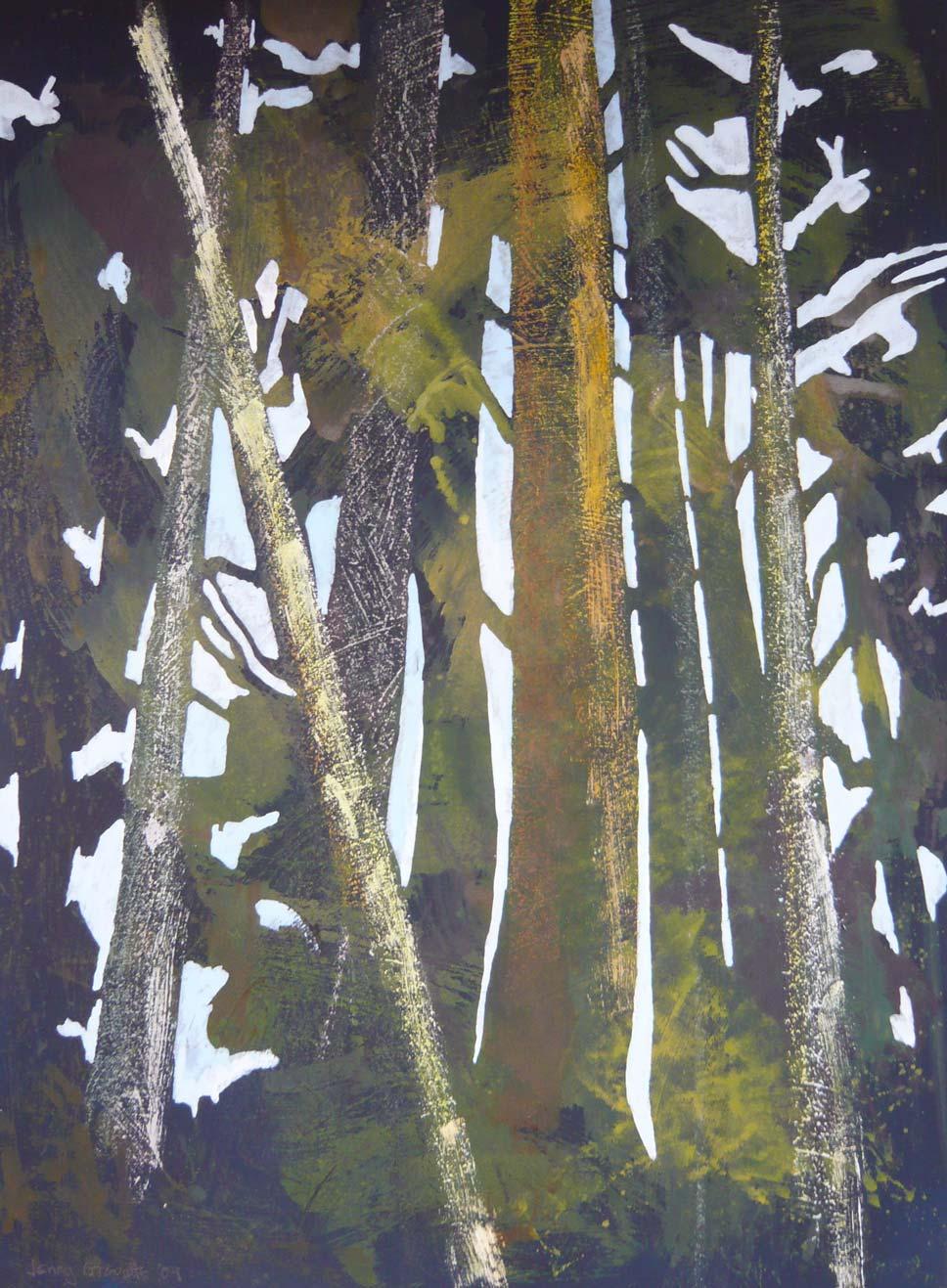 """Evening light through the trees"