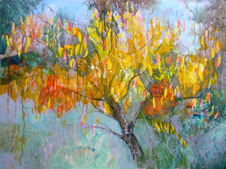 Flaming cherry tree