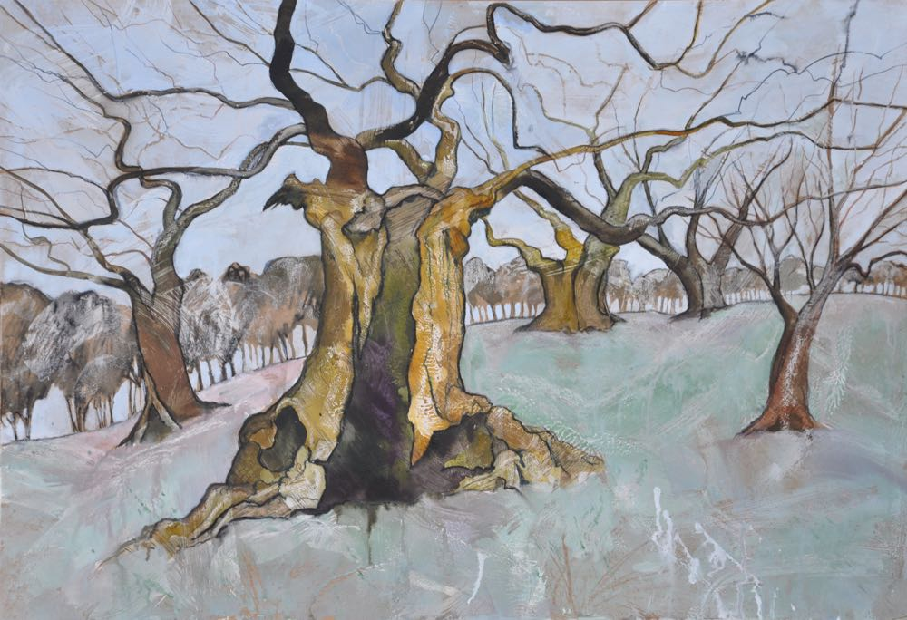 Portrait of a Bradgate Oak