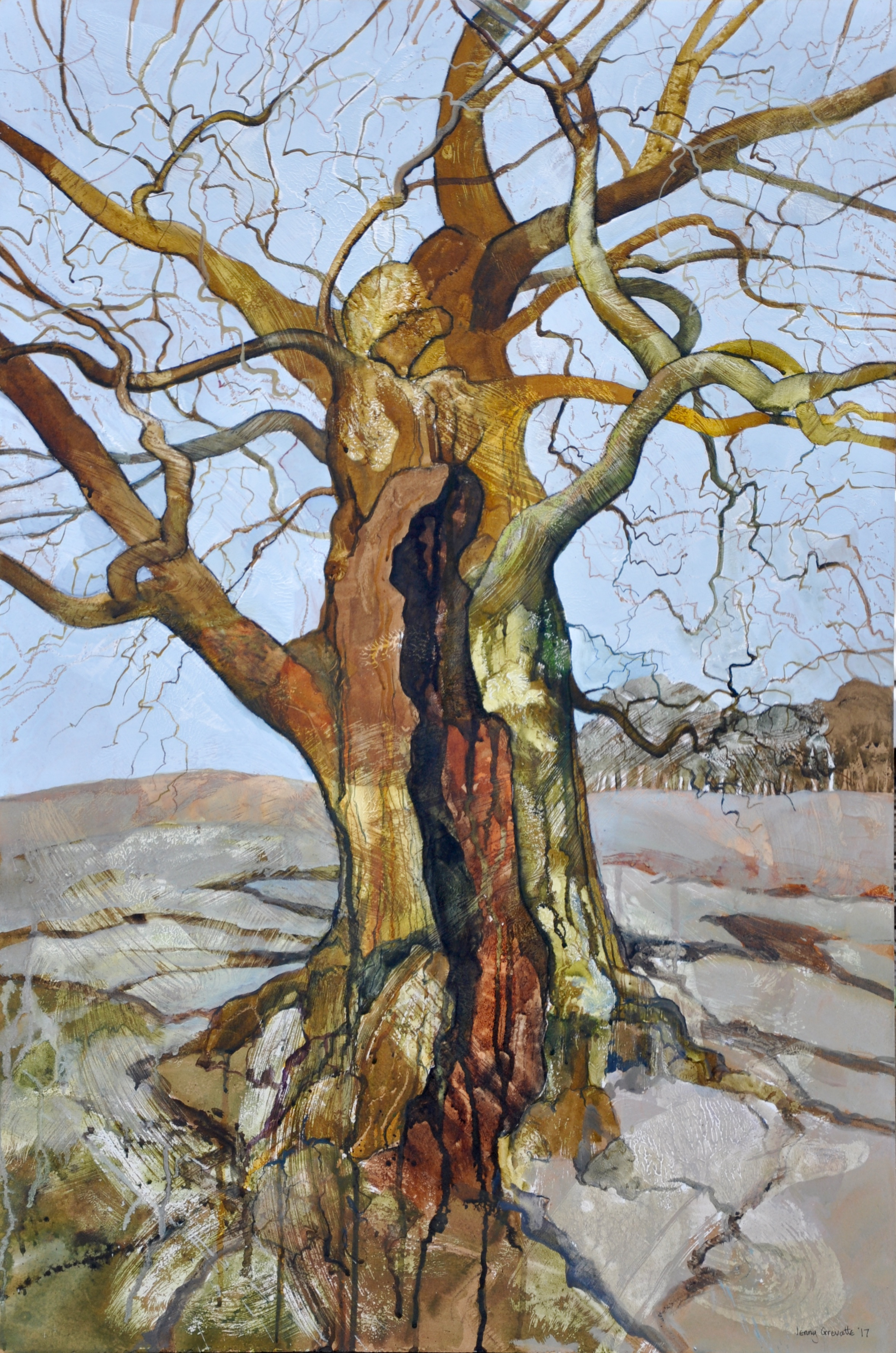 Portrait of an ancient oak, Bradgate