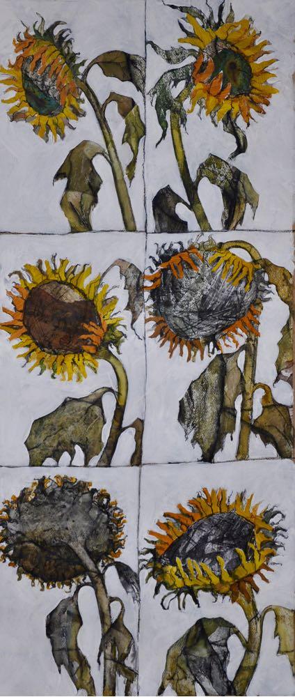 Portraits of sunflowers