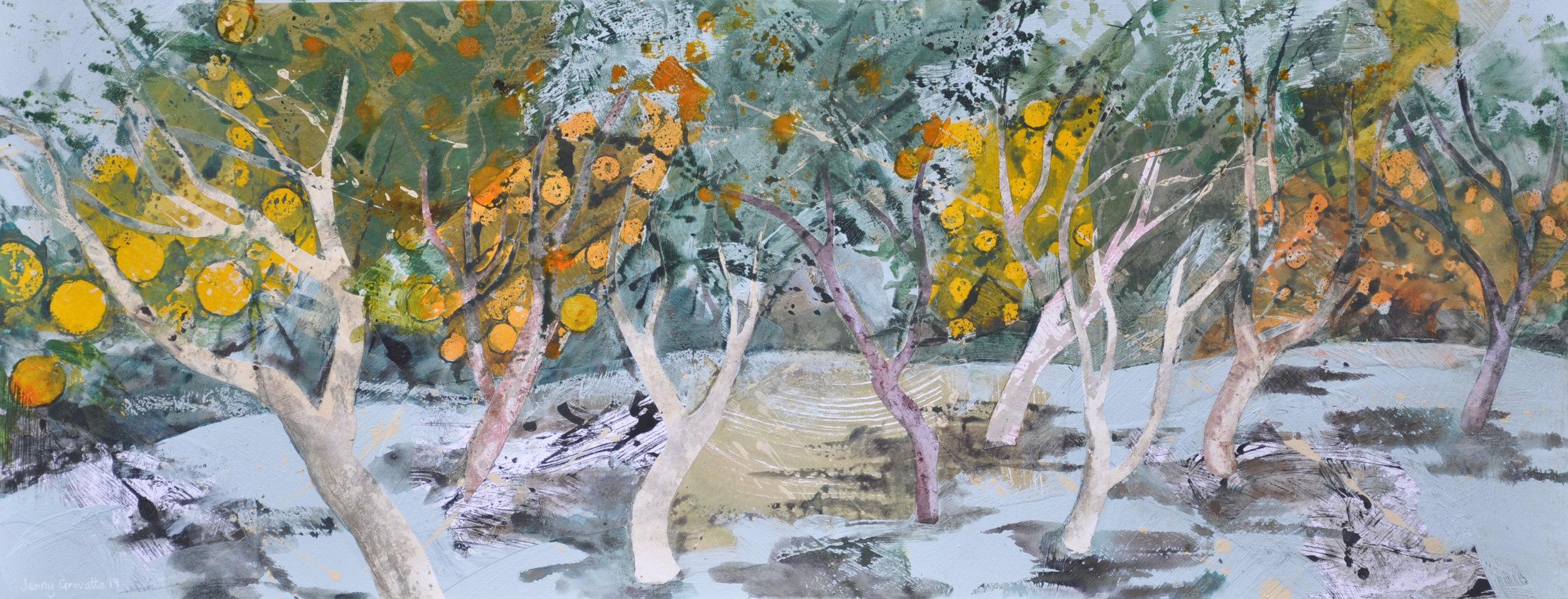 Sunny orange grove, Crete