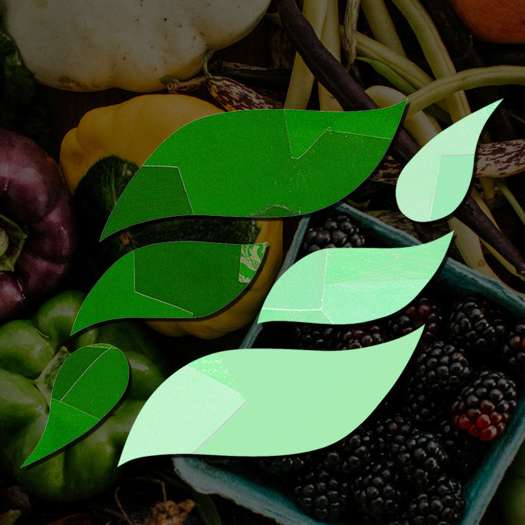FARMFARE_FEATURED IMAGE1.jpg