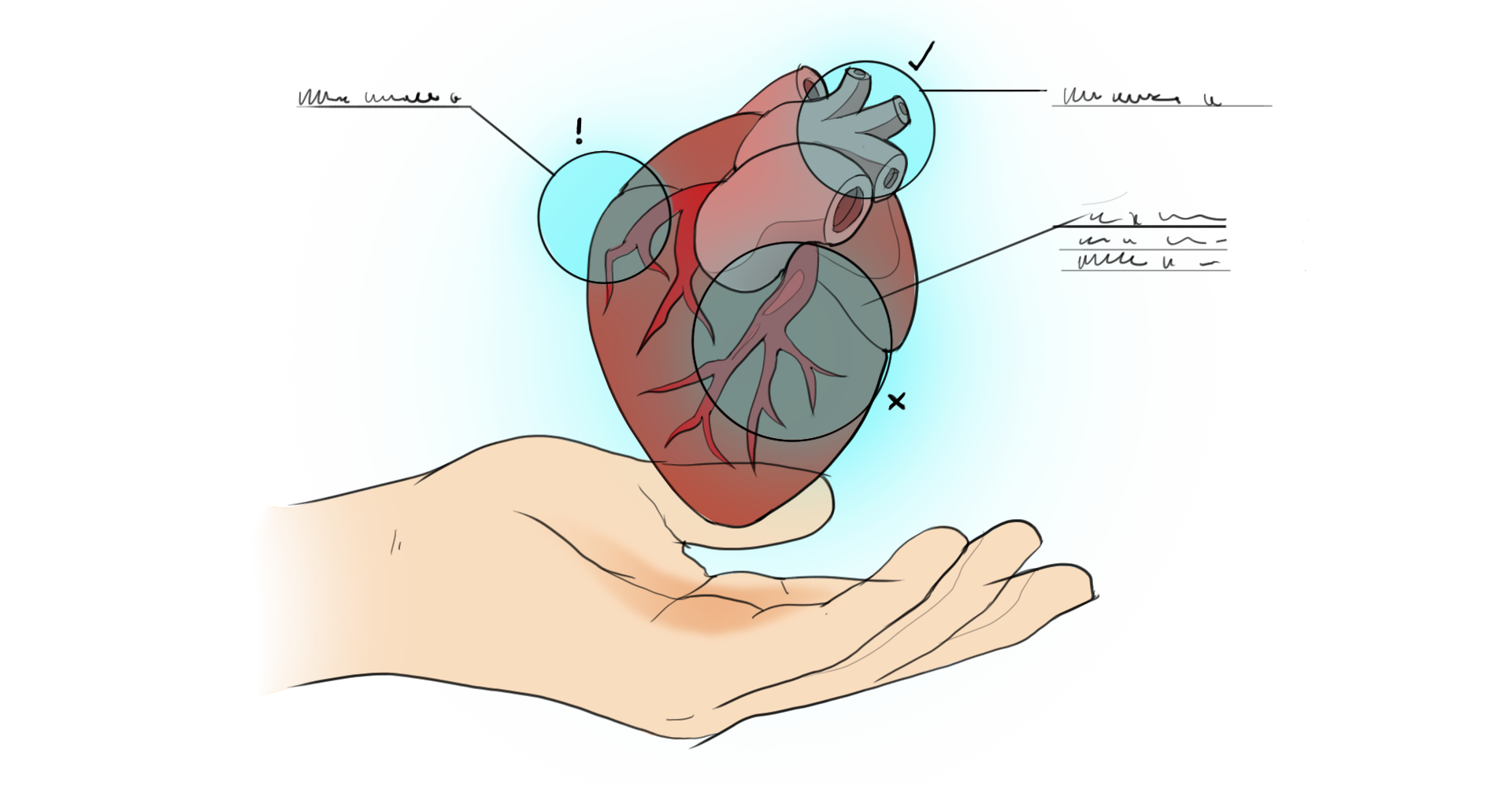 Augmented Heart.png