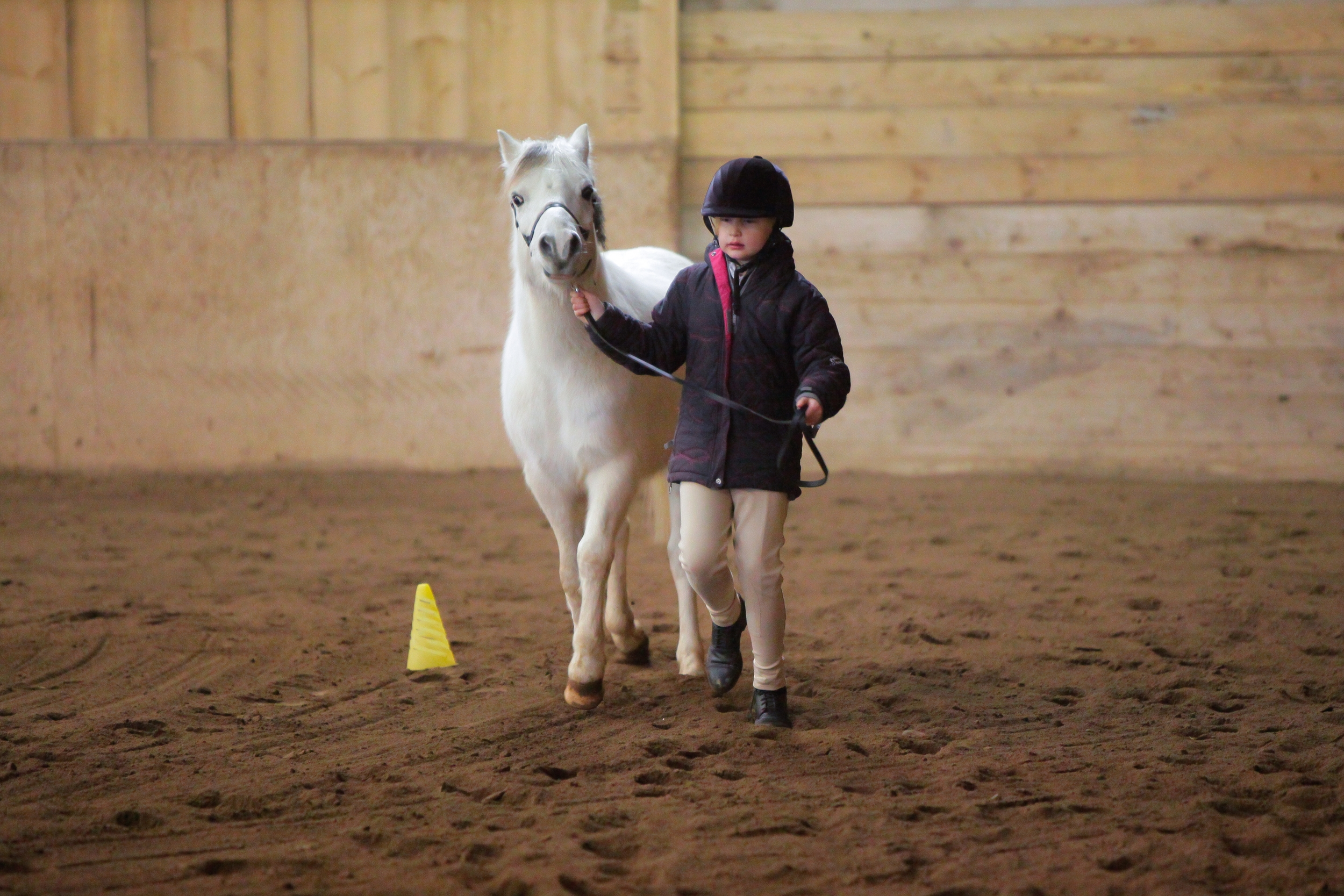 kid pony.JPG
