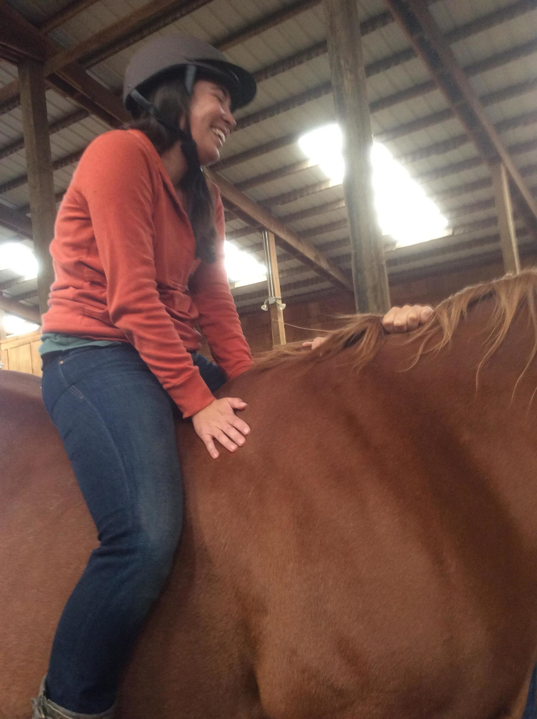 equine guided learning.JPG