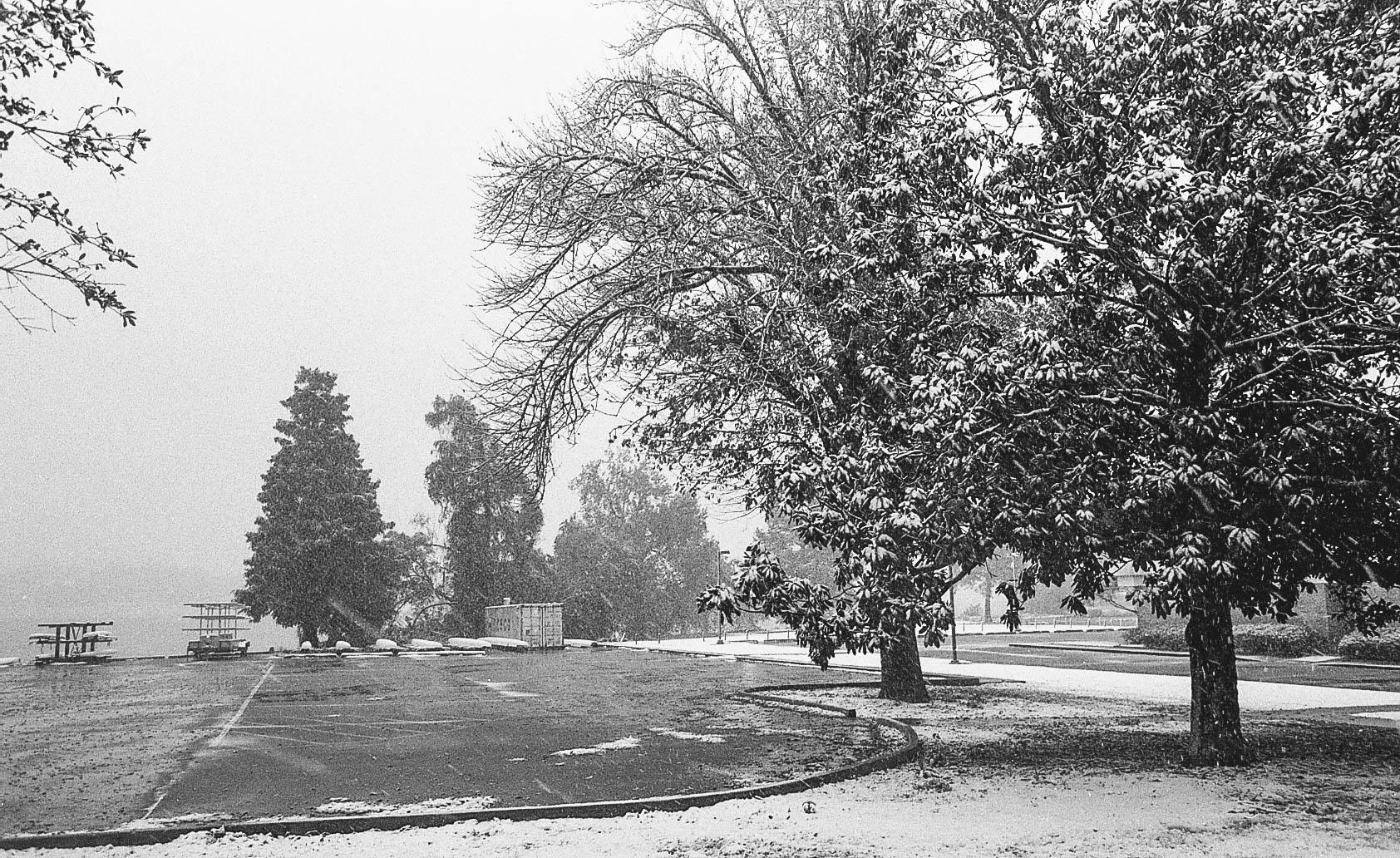 snowday-1-2.jpg