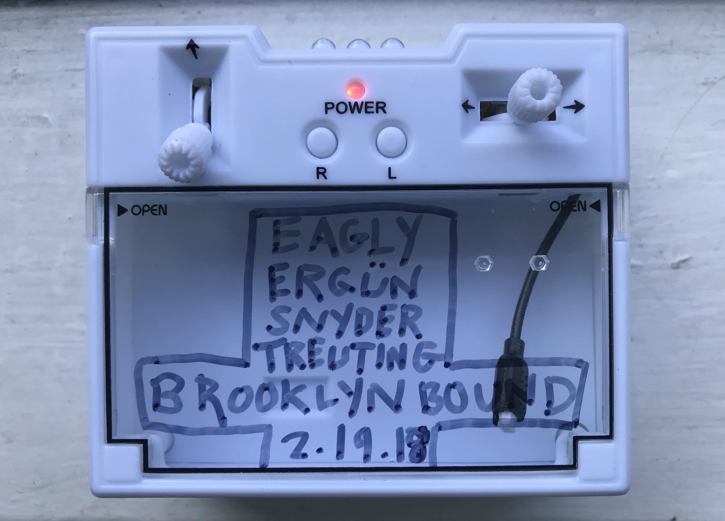 Eagly Ergun Snyder Treuting Brooklyn Bound.jpg