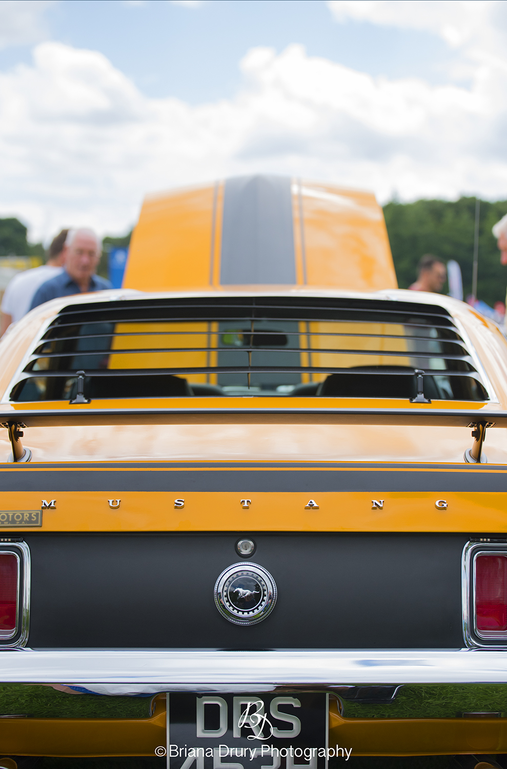 Cars_in_the_Park_1115