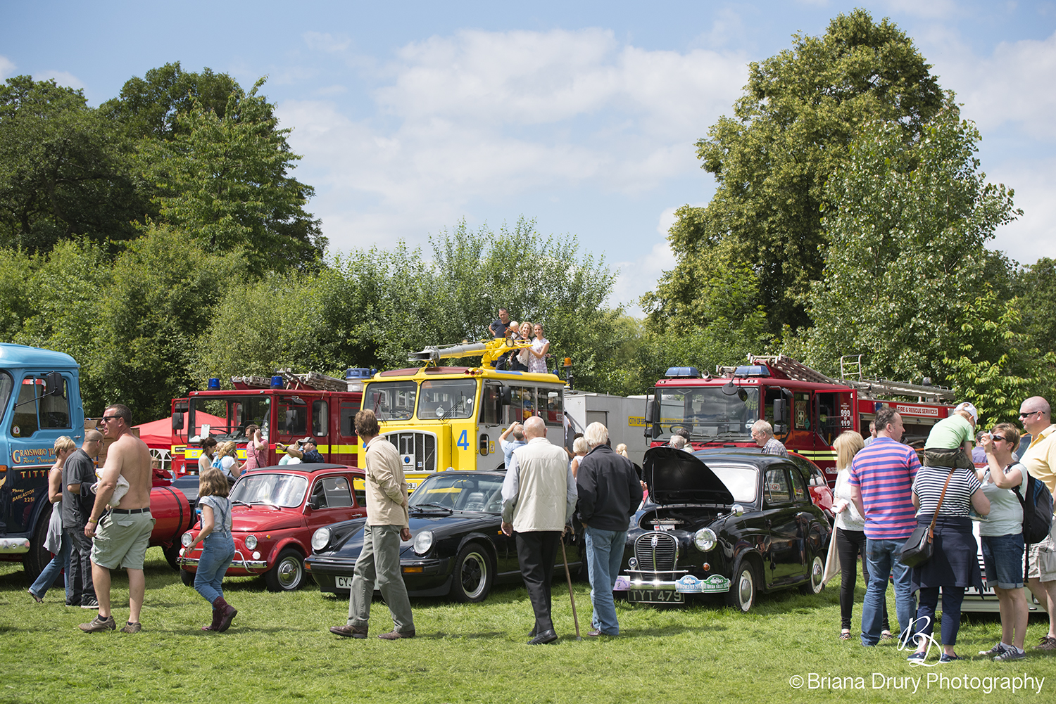 Cars_in_the_Park1153