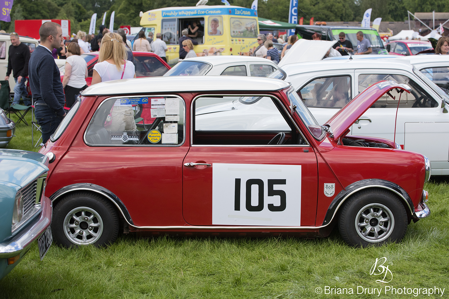 Cars_in_the_Park1293