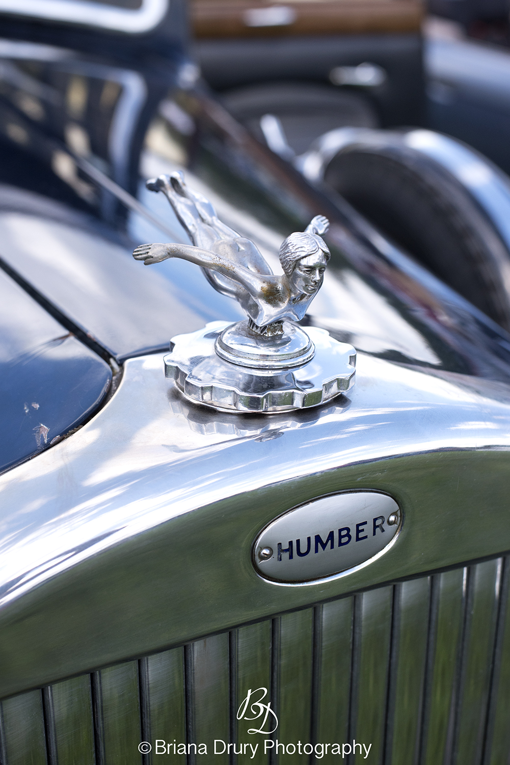 Cars_in_the_Park1309