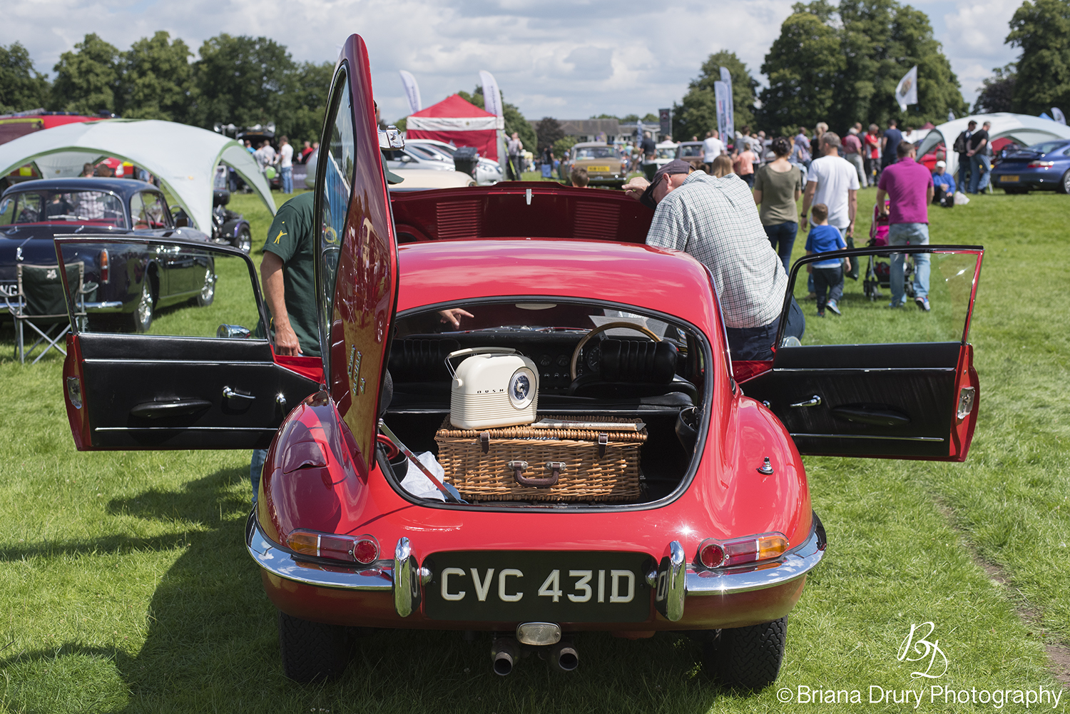 Cars_in_the_Park1396