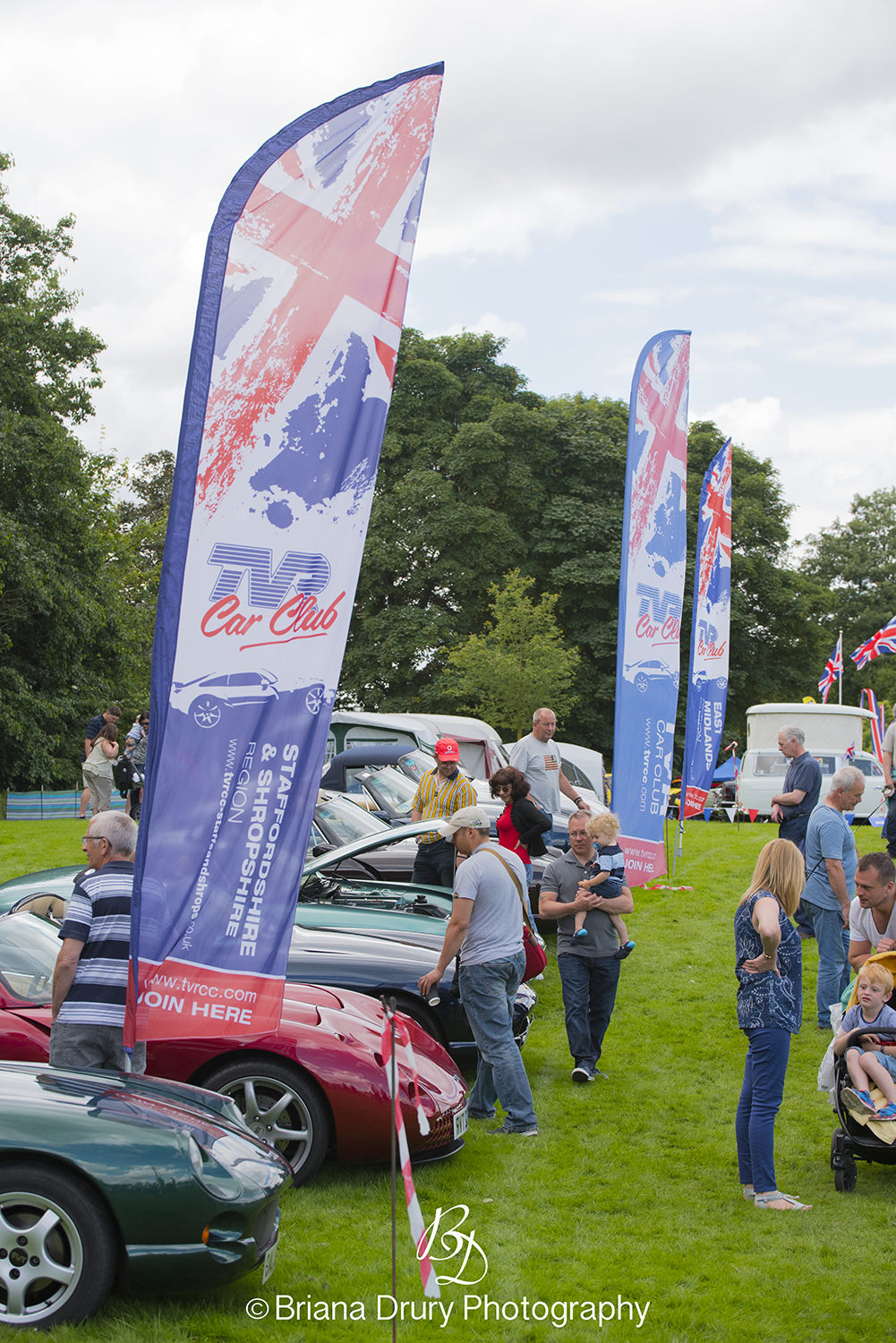 Cars_in_the_Park1240