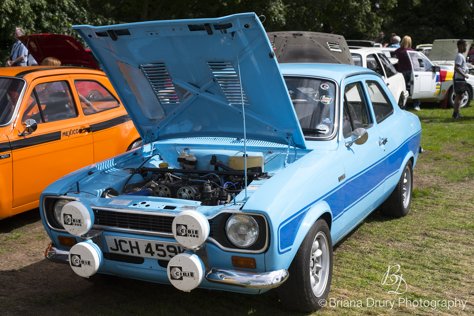 Cars_in_the_Park 1557
