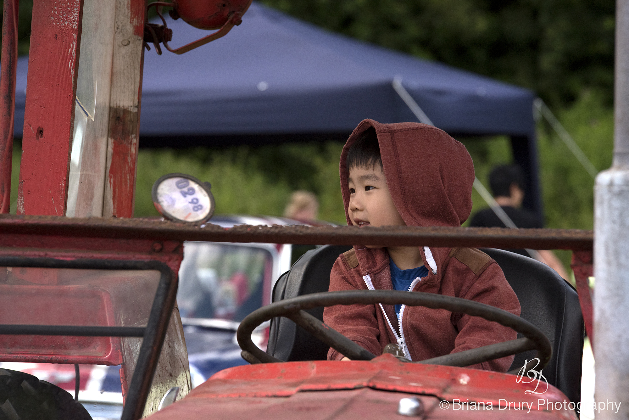 Cars_in_the_Park1169